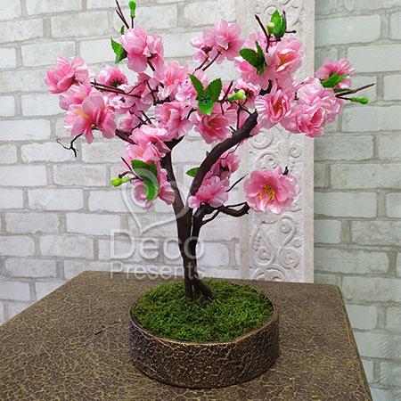 Дерево Розовая сакура
